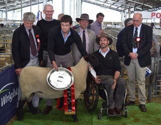 Champion Meat breed Sheep, Teresa and Stu Sinclair, Little River Stud
