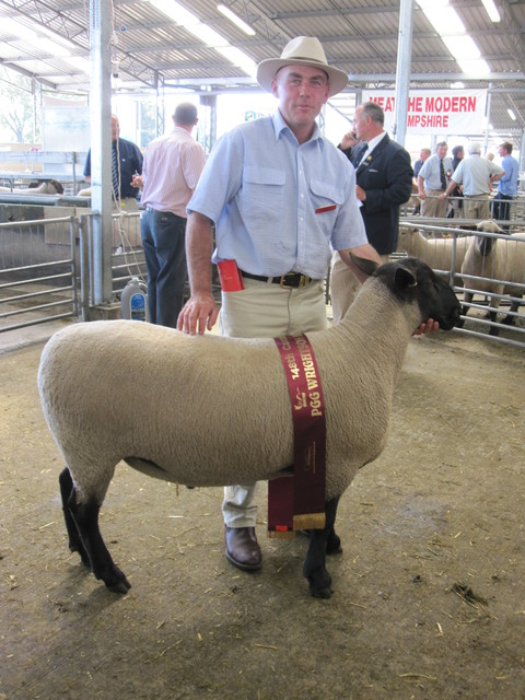 2010 Christchurch Show, First placed Ram Hogget , bred by Peter Boag
